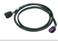 EXT HARNESS-10 PIN
